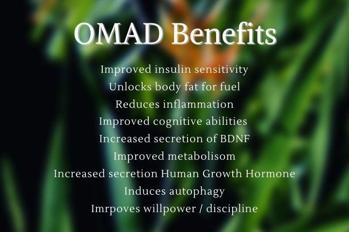 OMAD Benefits