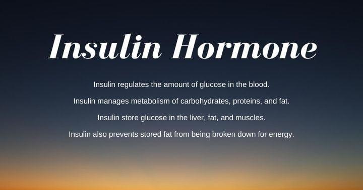 Insulin Hormone